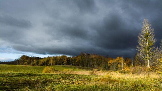 Prognoza pogody na dziś: dzień pod znakiem burz