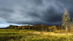 Prognoza pogody na dziś: chmury, deszcz i gwałtowne burze