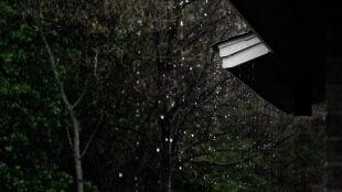 Może intensywnie padać i silniej wiać. Ostrzeżenia i prognozy zagrożeń
