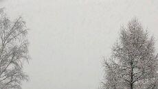 Zima przyszła do Zakopanego