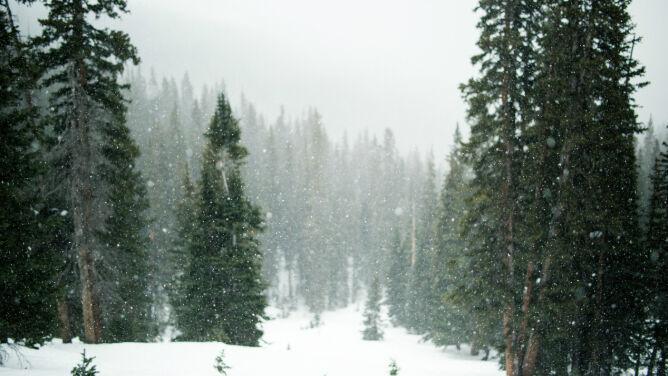 Prognoza pogody na dziś: <br />pochmurny i śnieżny dzień