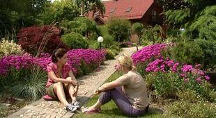 Ogród przy zboczu góry, odc.408